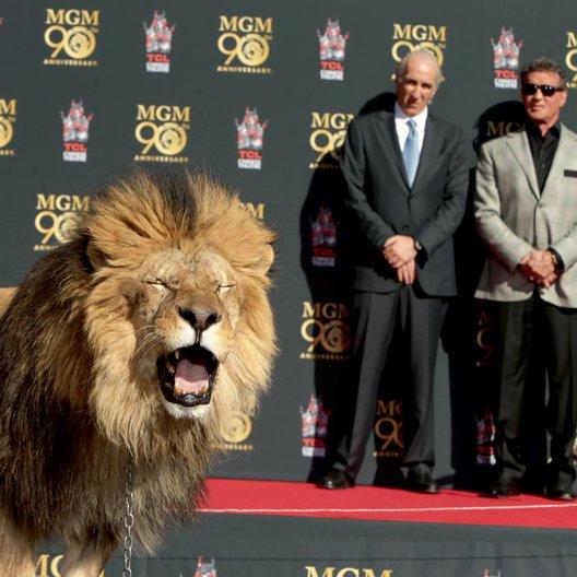 """Anlässlich des 90-jährigen Bestehens von MGM durfte """"Leo the lion"""" seine Pfoten auf dem Walk of Fame verewigen / Gary Barber und Sylvester Stallone"""