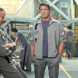 Escape Plan / Tomb, The / Arnold Schwarzenegger / Sylvester Stallone