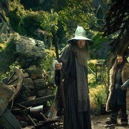 Hobbit: Eine unerwartete Reise, Der / Sir Ian McKellen / Richard Armitage Poster