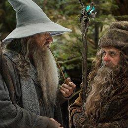 Hobbit: Eine unerwartete Reise, Der / Sir Ian McKellen / Sylvester McCoy Poster