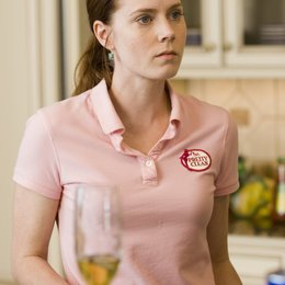 Sunshine Cleaning / Amy Adams Poster