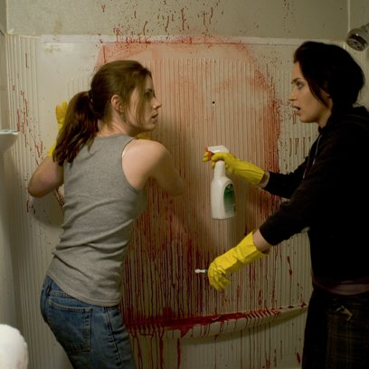 Sunshine Cleaning / Amy Adams / Emily Blunt Poster