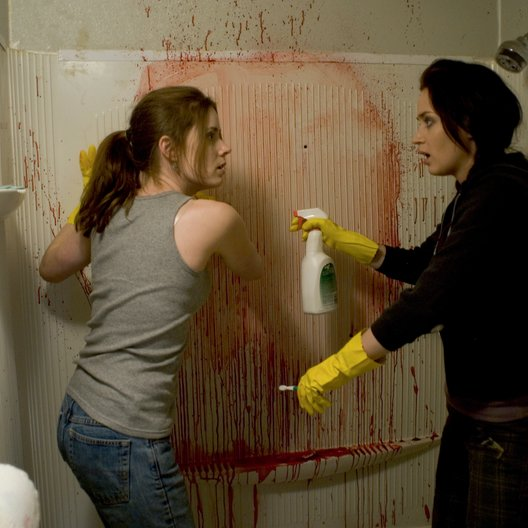 Sunshine Cleaning / Amy Adams / Emily Blunt