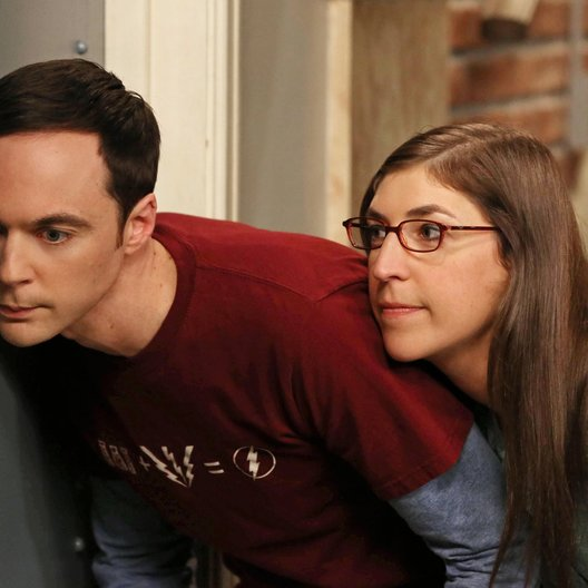 Big Bang Theory - Die komplette siebte Staffel, The Poster