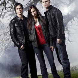 Vampire Diaries - Staffel 1, Teil 1, The Poster