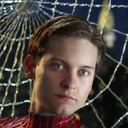 Spider-Man 2 / Tobey Maguire Poster