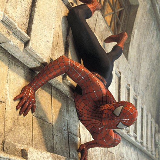 Spider-Man / Tobey Maguire Poster