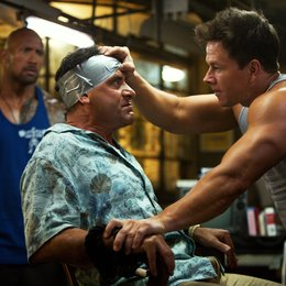 Pain & Gain / Dwayne Johnson / Tony Shalhoub / Mark Wahlberg Poster