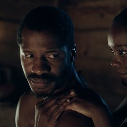 Birth of a Nation - Aufstand zur Freiheit, The Poster