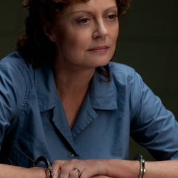 Company You Keep - Die Akte Grant, The / Susan Sarandon Poster