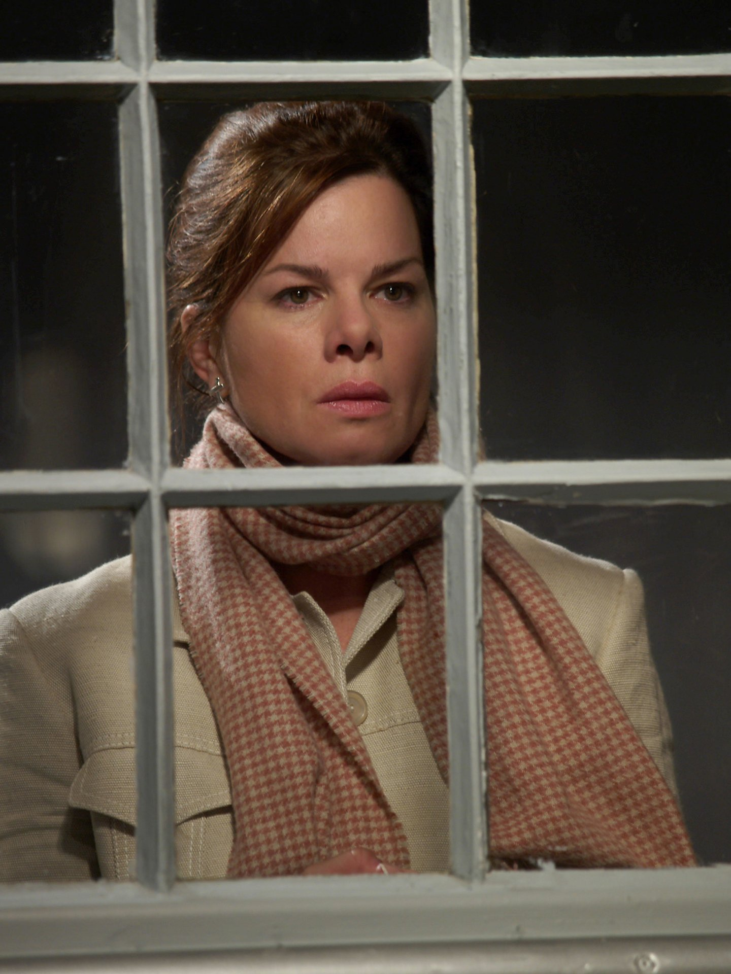 Marcia Gay Harden Unknown Blonde - after Words: Porn 88 fr
