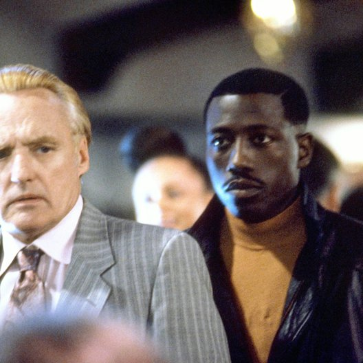 Boiling Point / Wesley Snipes / Dennis Hopper Poster