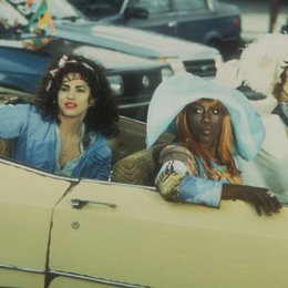 To Wong Foo, Thanks for Everything! Julie Newmar / John Leguizmao / Wesley Snipes / Patrick Swayze