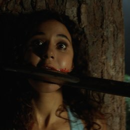 Wrong Turn / Emmanuelle Chriqui Poster