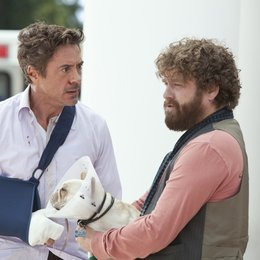 Stichtag / Robert Downey Jr. / Zach Galifianakis Poster