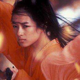 Hero / Zhang Ziyi