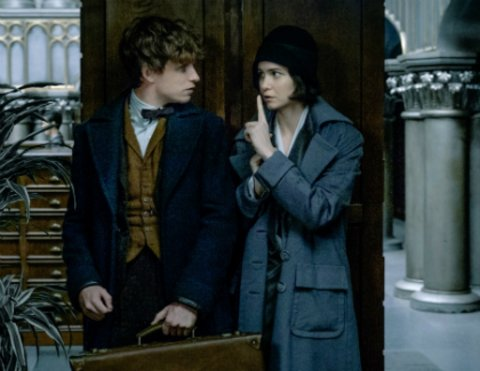 "Newt und Tina in ""Fantastic Beasts"" © Warner"