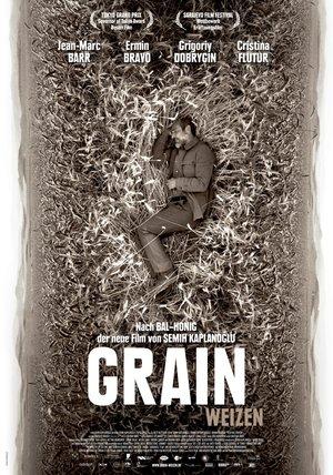 Grain - Weizen Poster