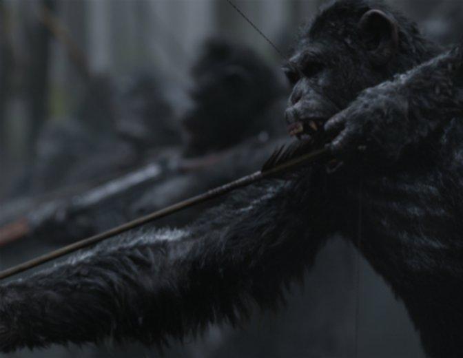 """""""Planet der Affen: Survival"""" © Twentieth Century Fox"""