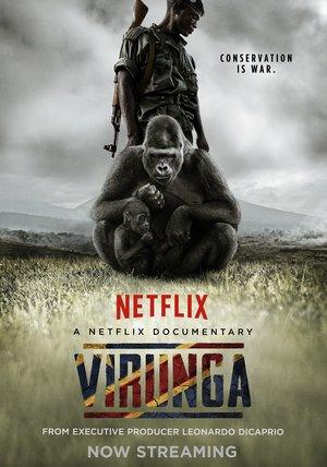 Virunga Poster