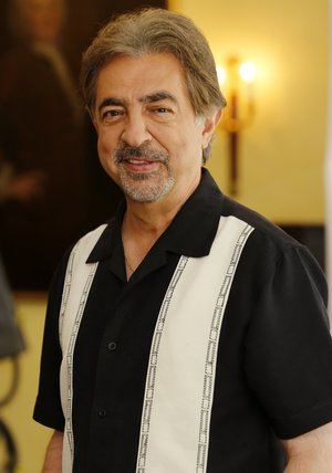 Joe Mantegna Poster
