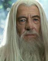 Dumbledore Darsteller