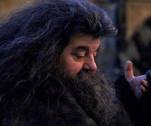 Hagrid geht unter die Dachse