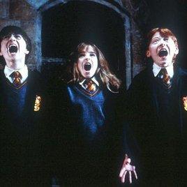 Harry Potter - und was dann?
