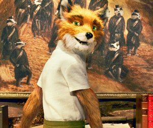 Mr. Fox und das fehlende Gebiss
