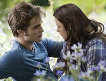 """Twilight 3""-Drehbuch im Internet?"