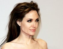 "Angelina Jolie mit Mark Wahlberg in ""The Silver Lining Playbook""?"