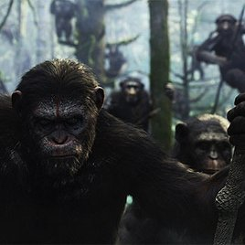 Matt Reeves bleibt Primaten treu