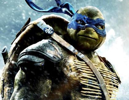 Turtles Kino
