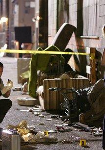 CSI: Crime Scene Investigation (Season 10)