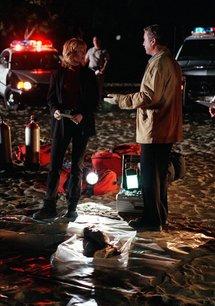 CSI: Den Tätern auf der Spur (01. Staffel)
