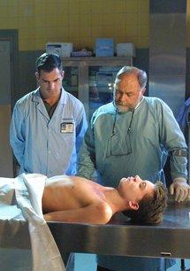 CSI: Den Tätern auf der Spur (02. Staffel)