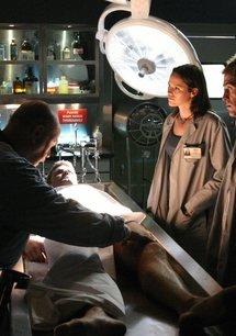 CSI: Den Tätern auf der Spur (05. Staffel)
