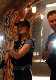 CSI: Den Tätern auf der Spur (06. Staffel)