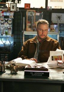 CSI: Den Tätern auf der Spur (08. Staffel)