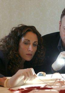 CSI: NY (Season 01, 23 Episoden)