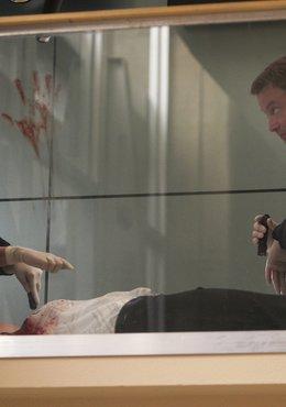 CSI: NY (Season 07)