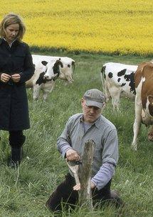 Das Duo: Bauernopfer