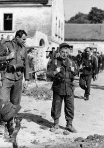 Der brave Soldat Schweijk