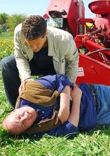 Der Landarzt (18. Staffel, 17 Folgen)