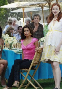 Desperate Housewives (4. Staffel, 17 Folgen)