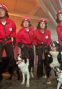 Die Rettungshunde - Hochzeitsreise in den Tod