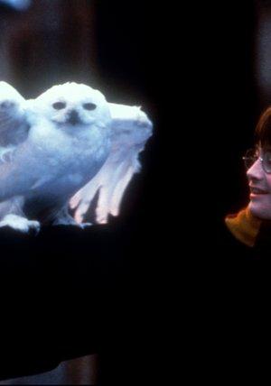 Harry Potter 1-6 Poster