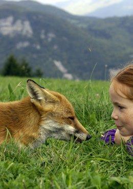 Le renard et l'enfant / Loup