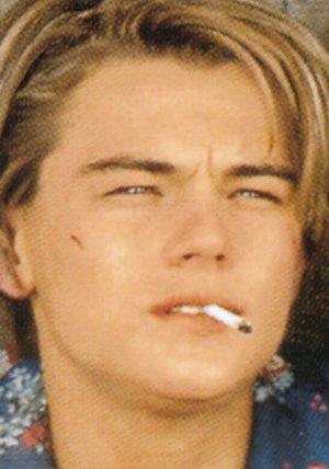 Leonardo DiCaprio - Das Portrait Poster