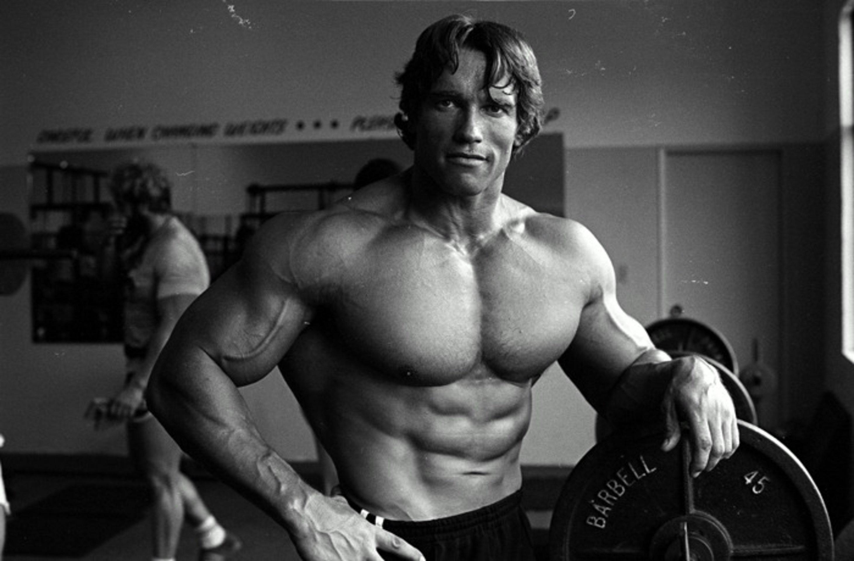Arnold swacheneger desnudo sex pics
